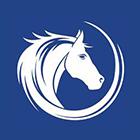 White Horse Surveyors Logo